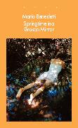 Cover-Bild zu eBook Springtime in a Broken Mirror