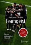 Cover-Bild zu Teamgeist