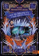 Cover-Bild zu Reinhardt, Verena: Herr Schnettelbeck und das Geheimnis der verschwundenen Sterne (eBook)