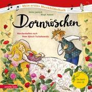 Cover-Bild zu Janisch, Heinz: Dornröschen