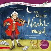 Cover-Bild zu Janisch, Heinz: Eine kleine Nachtmusik