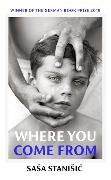 Cover-Bild zu Where You Come From von Stanisic, Sasa