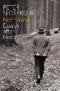 Cover-Bild zu Sloterdijk, Peter: Not Saved (eBook)
