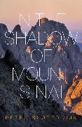 Cover-Bild zu Sloterdijk, Peter: In The Shadow of Mount Sinai (eBook)