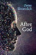 Cover-Bild zu Sloterdijk, Peter: After God (eBook)