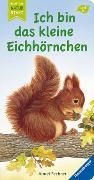 Cover-Bild zu Ich bin das kleine Eichhörnchen von Fechner, Amrei