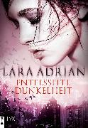 Cover-Bild zu Entfesselte Dunkelheit (eBook) von Adrian, Lara