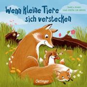 Cover-Bild zu zur Brügge, Anne-Kristin: Wenn kleine Tiere sich verstecken