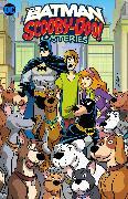 Cover-Bild zu Fisch, Sholly: The Batman & Scooby-Doo Mystery Vol. 2