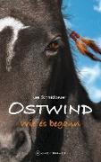 Cover-Bild zu Schmidbauer, Lea: Ostwind - Wie es begann (eBook)