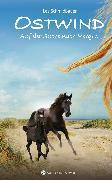 Cover-Bild zu Schmidbauer, Lea: Ostwind - Auf der Suche nach Morgen (eBook)