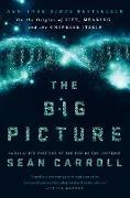 Cover-Bild zu The Big Picture von Carroll, Sean