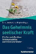 Cover-Bild zu Das Geheimnis seelischer Kraft (eBook) von Martens, Jens-Uwe