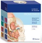 Cover-Bild zu PROMETHEUS LernKarten der Anatomie von Schünke, Michael