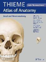 Cover-Bild zu Head and Neuroanatomy - Latin Nomencl. (THIEME Atlas of Anatomy) (eBook) von Schuenke, Michael