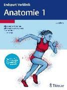 Cover-Bild zu Endspurt Vorklinik: Anatomie 1 (eBook)
