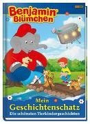 Cover-Bild zu Benjamin Blümchen: Mein Geschichtenschatz: Die schönsten Tierkindergeschichten von Riedl, Doris