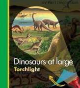 Cover-Bild zu Dinosaurs at Large von Delafosse, Claude