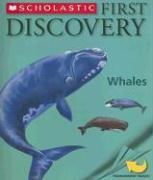 Cover-Bild zu First Discovery Whales von Jeunesse, Gallimard