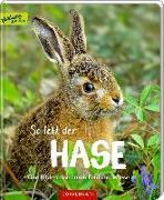 Cover-Bild zu Noa, Sandra: So lebt der Hase