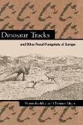 Cover-Bild zu Dinosaur Tracks and Other Fossil Footprints of Europe von Lockley, Martin G.