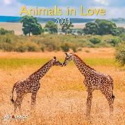 Cover-Bild zu teNeues Calendars & Stationery GmbH & Co. KG: Animals in Love 2021 - Wand-Kalender - Broschüren-Kalender - A&I - INT -30x30 - 30x60 geöffnet