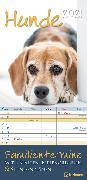 Cover-Bild zu teNeues Calendars & Stationery GmbH & Co. KG: Hunde 2021 Familienplaner - Familien-Timer - Termin-Planer - Kinder-Kalender - Familien-Kalender - 22x45