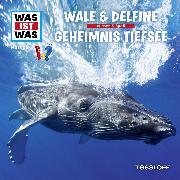 Cover-Bild zu Was ist was Hörspiel: Wale & Delfine/ Geheimnisse der Tiefsee (Audio Download) von Baur, Manfred