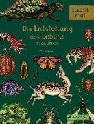 Cover-Bild zu Die Entstehung des Lebens. Evolution von Munro, Fiona