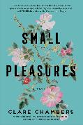 Cover-Bild zu Small Pleasures von Chambers, Clare