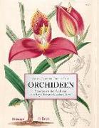 Cover-Bild zu Orchideen von Gardiner, Lauren