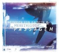 Cover-Bild zu Kalnein, Heinrich von: Passagem
