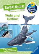 Cover-Bild zu Wieso? Weshalb? Warum? Erstleser: Wale und Delfine (Band 3) von Noa, Sandra