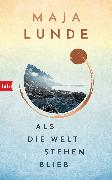 Cover-Bild zu Lunde, Maja: Als die Welt stehen blieb (eBook)
