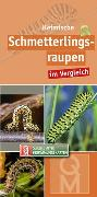 Cover-Bild zu Heimische Schmetterlingsraupen im Vergleich von Quelle & Meyer Verlag (Hrsg.)
