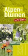 Cover-Bild zu Alpenblumen im Vergleich