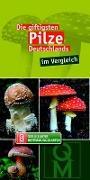 Cover-Bild zu Die giftigsten Pilze Deutschlands im Vergleich von Quelle & Meyer Verlag (Hrsg.)