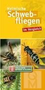 Cover-Bild zu Heimische Schwebfliegen im Vergleich von Quelle & Meyer Verlag (Hrsg.)