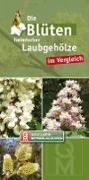 Cover-Bild zu Die Blüten heimischer Laubgehölze im Vergleich - Bestimmungskarten