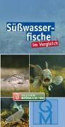 Cover-Bild zu Süßwasserfische im Vergleich von Quelle & Meyer Verlag (Hrsg.)