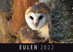 Cover-Bild zu Eulen 2022 von Quelle & Meyer Verlag (Hrsg.)