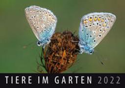 Cover-Bild zu Tiere im Garten 2022 von Quelle & Meyer Verlag (Hrsg.)