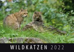Cover-Bild zu Wildkatzen 2022 von Quelle & Meyer Verlag (Hrsg.)