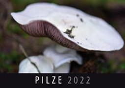 Cover-Bild zu Pilze 2022 von Quelle & Meyer Verlag (Hrsg.)