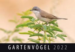 Cover-Bild zu Gartenvögel 2022 von Quelle & Meyer Verlag (Hrsg.)