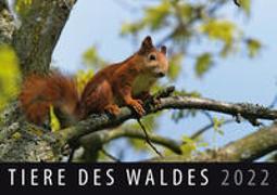 Cover-Bild zu Tiere des Waldes 2022 von Quelle & Meyer Verlag (Hrsg.)