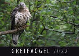 Cover-Bild zu Greifvögel 2022 von Quelle & Meyer Verlag (Hrsg.)