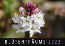 Cover-Bild zu Blütenträume 2022 von Quelle & Meyer Verlag (Hrsg.)
