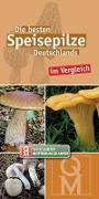 Cover-Bild zu Die besten Speisepilze Deutschlands im Vergleich von Quelle & Meyer Verlag (Hrsg.)
