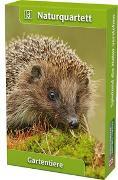 Cover-Bild zu Tiere im Garten von Quelle & Meyer Verlag (Hrsg.)